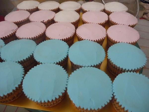 cupcake berlepa